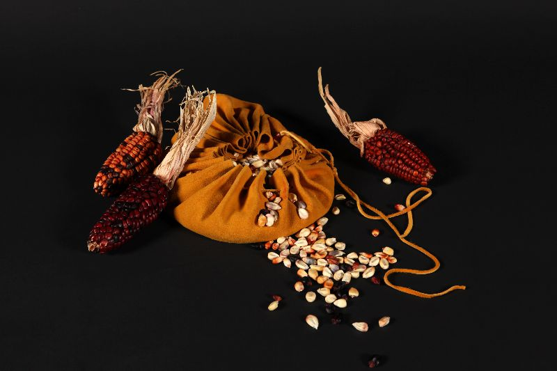 Three ears of reddish corn set around a leather bag that contains dried corn kernels.