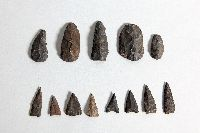There are five flint scrapers in the top row, and eight flint porjectile points in the bottom row.